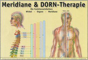 Beispiele-Meridiane-DornTherapie_Copyright-und-Eigentum-by-Sven-Bruns-scaled.jpg